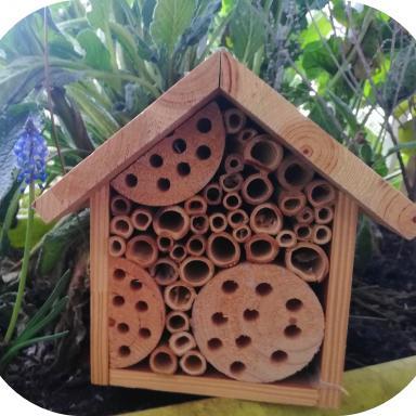 Maison pour abeilles sauvages