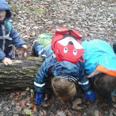 5 VISITES PONTUELLES pour un enfant de 3.5 à 12 ans